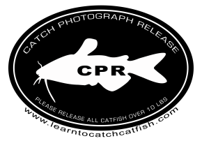 Catfish CPR