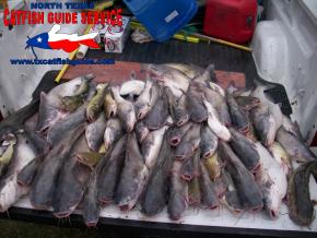 Summer Catfishing