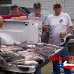 texas blue catfish