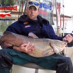 texas flathead catfish