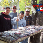 texas blue catfish