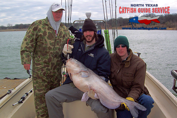 trophy blue catfish