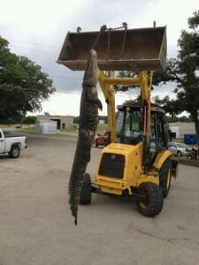 """Eagle Mountain Lake Fishing Report and """"The Alligator"""" May 12,2012"""