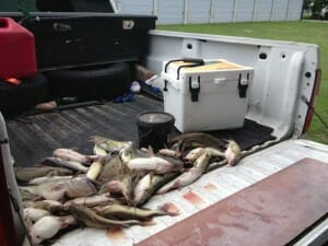 Eagle mountain fishing reports for Eagle lake texas fishing